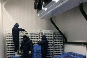 armazenagem de produtos perecíveis